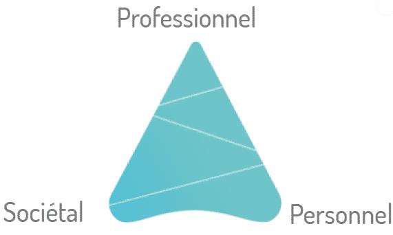 leadem mentoring triangle de valeur professionel societal personnel